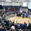 Carlisle Dairy Bulls 5436