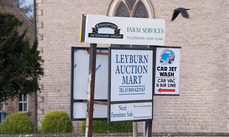 Leyburn mart sign.