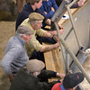 Ashford Market Store Cattle Sale<br /> Store buyers around the ringside<br /> Picture Tim Scrivener 07850 303986