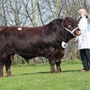 The Lincoln Red Market Stainton Raider from R. E. Needham and Son sold for 4,200 gns.<br /> Lot 10.