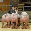 Skip Xmas res pigs