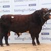 Stirling BSH 5,500