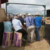 Thame Summer Sheep Fair 2014<br /> Picture Tim Scrivener 07850 303986