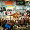 four Limousin cross heifers from ????? sold for £945 per head.