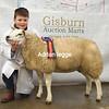 Gisburn 8