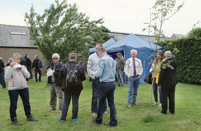 Dunlouise Aberdeen Angus Sale 26th June, Kingston Farm, Kingsmuir, Forfar,