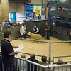 Shearling ram Melton Constable Victor from Tom, Joe and Alex Lockhart of Melton Constable, Norfolk sold for 720 gns.