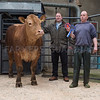 The prime beef champion, a Limousin bullock from Paul Bradley of Millom, Cumbria (right) with judge James Crichton.