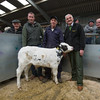 The champion calf from David Milner of Claughton, Lancashire, a British Blue cross selling for £388. (L-R) Judge Robert Foster, David Milner and auction mart chairman David Hargreaves.