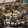 Sale of beef breeding and store cattle.<br /> Lot 95,96,97,98.