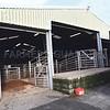 Ref Theresa Photo Arvid Parry Jones. ( Pic 14 ).<br /> Brightwells Refurbished Rhayader Livestock Market, Mid Wales. Sale of 1500 fat lambs. <br /> Loading bays.