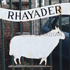 Ref Theresa Photo Arvid Parry Jones. ( Pic 22 ).<br /> Brightwells Refurbished Rhayader Livestock Market, Mid Wales. Sale of 1500 fat lambs. <br /> One of the gates logo.