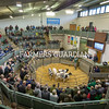 Auctioneer Alistair Sneddon selling calves in the main ring.