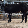 A British Blue X Limousin heifer from L. H. Lomas sold for £2,000.