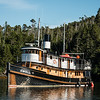 The Nautilus Swell, our home for 11 days. Wooden tugboat built in 1913.