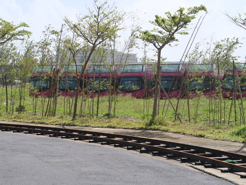 Parked buses at Cocobay
