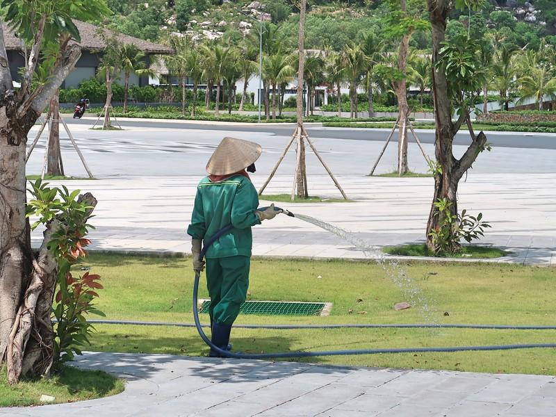 Melodia gardener
