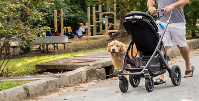 Fletcher carries his leash as he heads home past Orme Park in Virginia Highlands.  The park runs along Brookridge Drive and has a playground on one side of Clear Creek and a natural path on the other side.  The park is filled with kids toys and is heavily used by dog walkers, families and runners.  (Jenni Girtman / Atlanta Event Photography)
