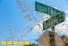Kirkwood<br /> 229 Howard St NE <br /> Atlanta, GA 30317 <br /> This is for our Insider's Guide on Kirkwood.