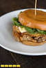 Southbound<br /> 5394 Peachtree Street <br /> Chamblee, GA 30341 <br /> tory is on their spicy fried chicken sandwich - it has a nice contrast of colors with the brown chicken and the green tomato (might look more interesting after it's been cut in half), gorgeous bun