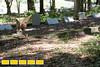 160718LIajc091116_IN_EastAtlanta-CemeteryLRO-7