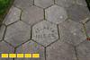 130727LIajc090813tourcover-AnsleyParkLRE-0008