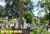 130714LIajc090813tourcover-cemeteryLRE-0011