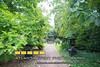 140712LIajc090714tourofhomes-CandlerParkLRO-0001