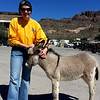 Jamie wanted to take the baby burro home ... wold not fit in her bag on her bike though.