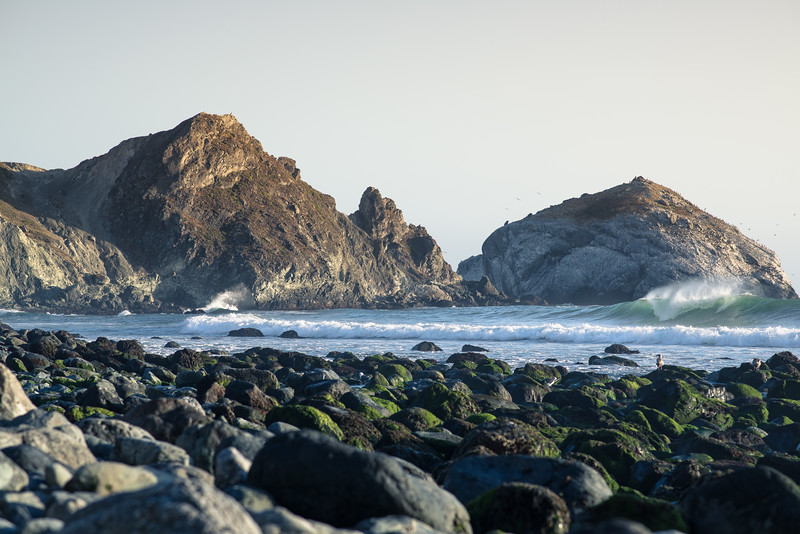 Big Sur Photos on Nikon