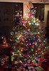 "Christmas Tree. © Rick Collier<br /> <br /> <br /> <br /> Christmas holiday celebration tree ""christmas tree"" decoration decor presents santa ""santa claus"""