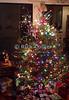 "Christmas Tree. © Rick Collier<br /> <br /> <br /> <br /> Christmas holiday celebration tree ""christmas tree"" decoration decor presents santa ""santa claus"""