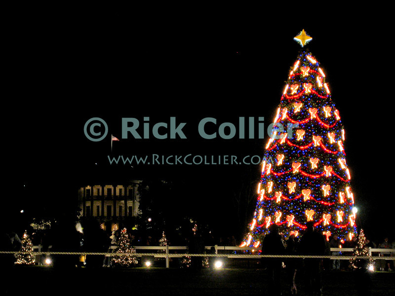 "Washington, DC, USA -- Tourists and locals enjoy the light show at the US national Christmas tree, with the White House in the background.<br /> <br /> <br /> <br /> <br /> Christmas; US; USA; Washington; ""Washington DC""; DC; winter; ""christmas tree""; night; dark; light; lights; ""after dark""; ""christmas tree lights""; decorations; holiday; holidays; noel; yuletide; celebration; ""white house""; ""national christmas tree"";"
