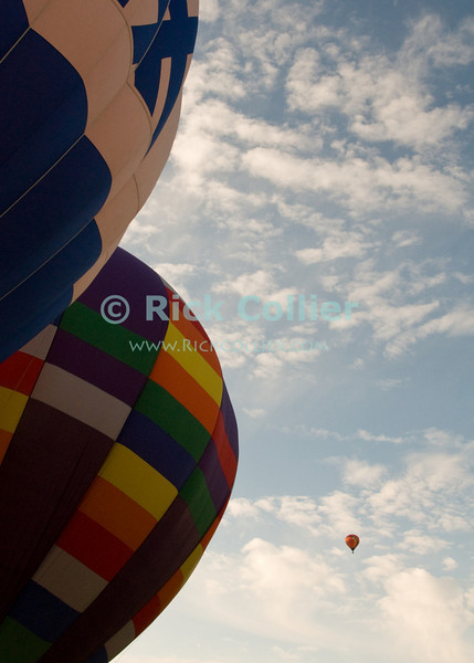"""Hot air balloons lift in early morning at the annual Winchester Balloon Festival.  Long Branch Farm, Winchester, Virginia, USA.  © RickCollier.com<br /> <br /> <br /> <br /> <br /> <br /> """"balloon festival""""; USA; Virginia; Winchester; """"Long Branch""""; """"Long Branch Farm""""; morning; balloon; lift; """"balloon lift""""; """"hot air balloon""""; sky; flight; flying;"""