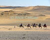"Giza, Cairo, Egypt -- Locals lead tourists on camel rides near the pyramids at Giza. © Rick Collier / RickCollier.com<br /> <br /> <br /> <br /> <br /> <br /> travel; vacation; destination; Egypt; Cairo; Giza; pyramids; pyramid; ""Pyramids at Giza""; tourist; tourism; camel; ride; ""camel ride""; ""camel caravan""; desert"