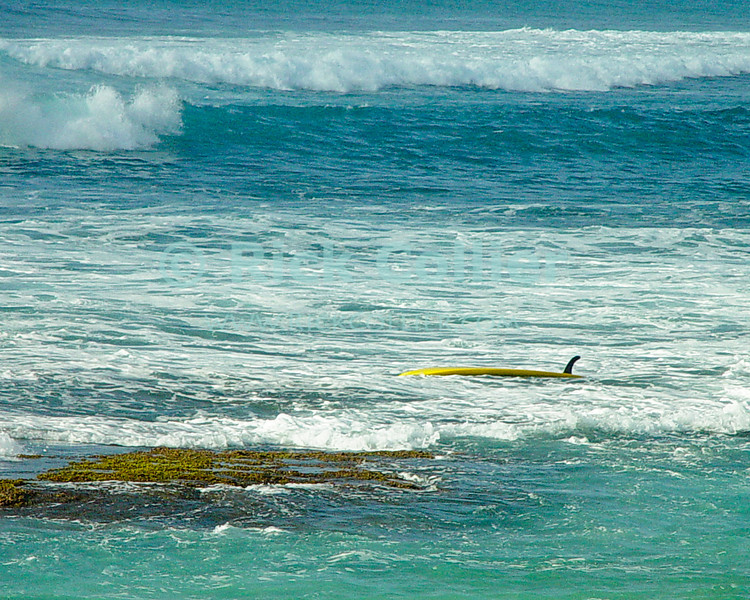 An escaped surfboard waits for its rider to come retreive it.  North Shore, Oahu, Hawaii.  © Rick Collier<br /> <br /> <br /> <br /> <br /> <br /> <br /> <br /> Hawaii Hawai'i Oahu North Shore beach surf board waves ocean sea seashore surfer surfers surfing breakers rocks surfboard