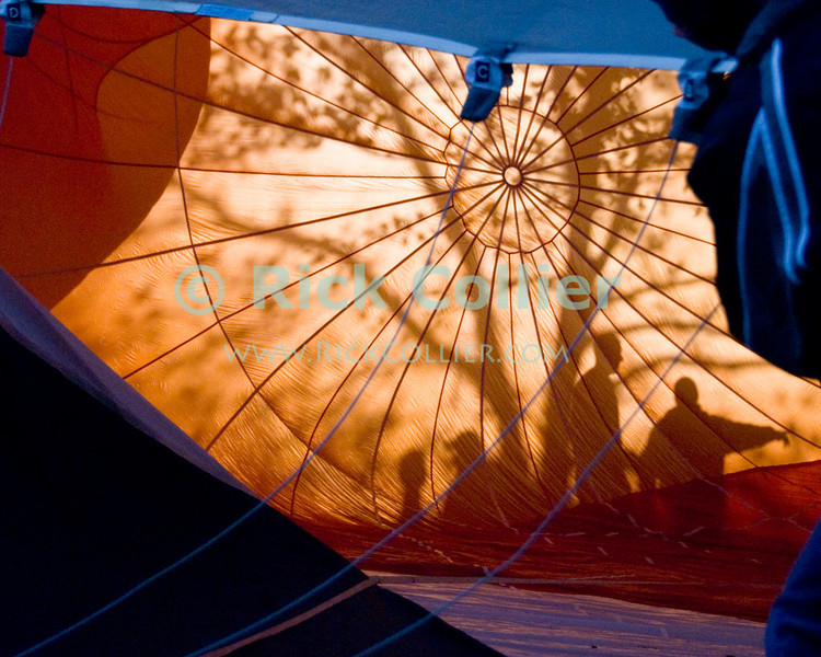 """The rising sun backlights trees and passersby, throwing shadows through the material of a balloon on the ground as it is inflated.  Balloon Festival, Long Branch Farm, Winchester, Virginia, USA.  © RickCollier.com<br /> <br /> <br /> <br /> <br /> <br /> """"balloon festival""""; USA; Virginia; Winchester; """"Long Branch""""; """"Long Branch Farm""""; morning; balloon; lift; """"balloon lift""""; """"hot air balloon""""; fill; flame; torch; burner; liftoff; takeoff; inflate; fill; inflation; sun; sunrise; shadow; tree; trees; shadows;"""