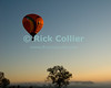 """First Light"" -- The rising sun finally greets a balloon in flight over fields and pastures in early morning at the annual Winchester Balloon Festival.  Long Branch Farm, Winchester, Virginia, USA.  © RickCollier.com<br /> <br /> <br /> <br /> <br /> <br /> ""balloon festival""; USA; Virginia; Winchester; ""Long Branch""; ""Long Branch Farm""; tree; trees; dawn; morning; balloon; lift; ""balloon lift""; field; sunrise; mist; fog; frost; fence; fences; field; pasture; tree; trees;"