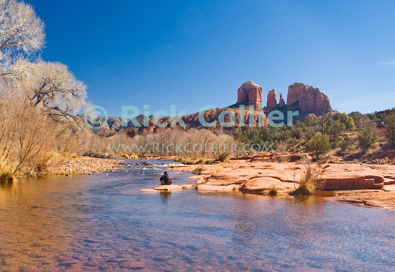 Oak Creek, Sedona, Arizona.  A hiker pauses to enjoy the day on a rock in the middle of Oak Creek.  Cathedral rock stands in the background.  © Rick Collier<br /> <br /> <br /> <br /> <br /> <br /> <br /> <br /> US USA Arizona Sedona Oak Creek water stream river cathedral rock desert cottonwood trees hiker rest calm relax view red sand sandy shore red rock