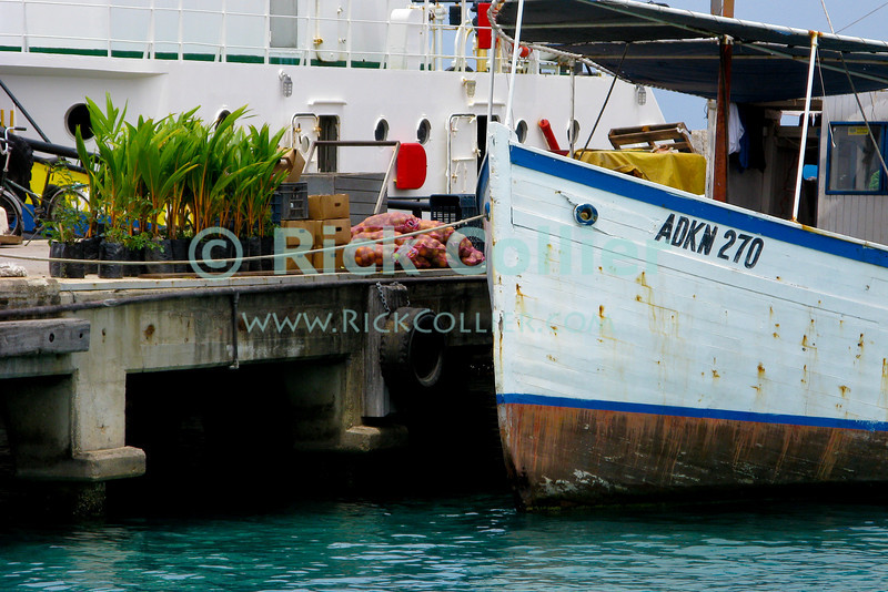 "Kralendijk, Bonaire, Netherland Antilles -- Boats offload and sell fresh vegetables, plants, and other goods at the city pier.   © Rick Collier<br /> <br /> <br /> <br /> <br /> Bonaire; ""Netherlands Antilles""; Caribbean; tropic; tropical; vacation; destination; Kralendijk; market; farmers; ""farmers' market""; seawall; seashore; waterfront; ""sea wall""; harbor; ocean; sea; view; boat; pier; ""city pier""; plants; flowers; produce; vegetables; fruits;"