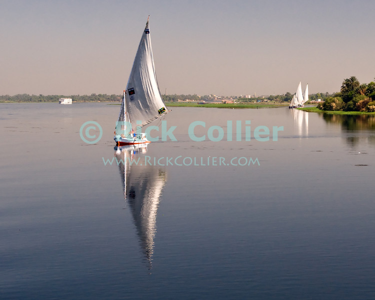 """Nile River, Egypt -- Feluccas set out from their village first thing in the morning. © Rick Collier / RickCollier.com.<br /> <br /> <br /> <br /> travel; vacation; tour; tourism; tourist; destination; Egypt; boat; boats; sailboat; shore; river; Nile; """"Nile River""""; sail; sailing; felucca;"""