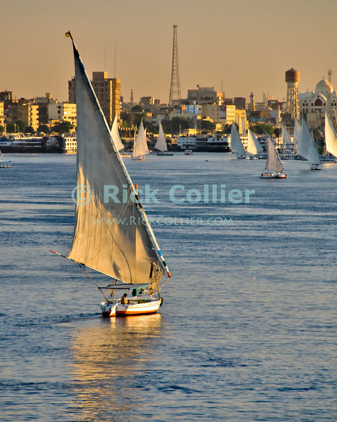 """Aswan, Egypt -- Feluccas crowd the harbor at Aswan in the late afternoon, as sunset approaches. © Rick Collier / RickCollier.com.<br /> <br /> <br /> travel; vacation; tour; tourism; tourist; destination; Aswan; boat; boats; sailboats; sail; sailing; harbor; river; """"Nile River""""; Nile; sunset; evening;"""