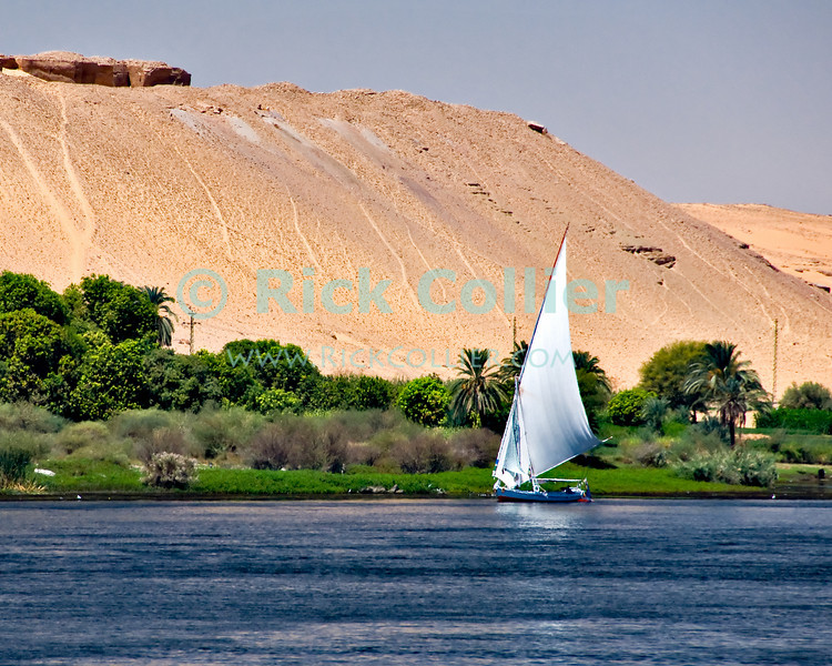 "Nile River, Egypt -- A felucca sails on the Nile River near Aswan. © Rick Collier / RickCollier.com.<br /> <br /> <br /> <br /> travel; vacation; tour; tourism; tourist; destination; Egypt; boat; boats; sailboat; shore; river; Nile; ""Nile River""; sail; sailing; felucca; Aswan"