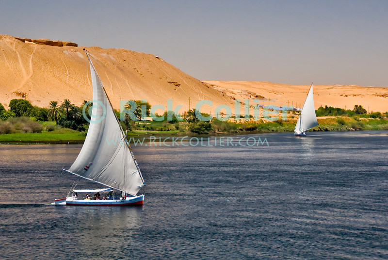 "Nile River, Egypt -- Feluccas sail on the Nile River near Aswan. © Rick Collier / RickCollier.com.<br /> <br /> <br /> <br /> travel; vacation; tour; tourism; tourist; destination; Egypt; boat; boats; sailboat; shore; river; Nile; ""Nile River""; sail; sailing; felucca; Aswan"