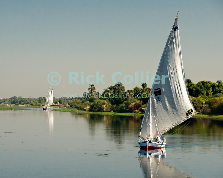 "Nile River, Egypt -- Feluccas set out from their village first thing in the morning. © Rick Collier / RickCollier.com.<br /> <br /> <br /> <br /> travel; vacation; tour; tourism; tourist; destination; Egypt; boat; boats; sailboat; shore; river; Nile; ""Nile River""; sail; sailing; felucca;"