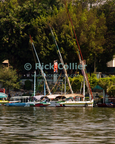 """Cairo, Egypt -- Nile River cruise.  Felucca sailboats await the evening tourist cruises, moored on the banks of the Nile in Cairo. © Rick Collier / RickCollier.com.<br /> <br /> <br /> <br /> <br /> <br /> travel; vacation; tour; tourism; tourist; destination; Egypt; Cairo; city; view; Nile; River; """"Nile River""""; cruise; buildings; shoreline; boat; boats; bridge; bridges; hotels; felucca; feluca; sailboat; sail;"""