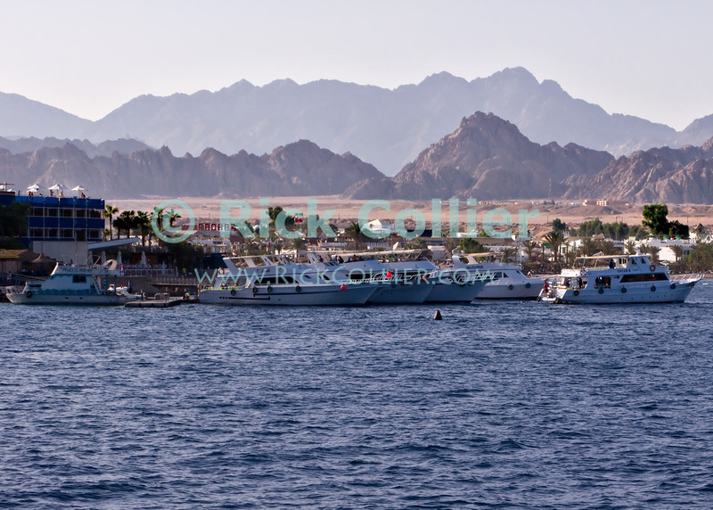 "Red Sea, Egypt -- Dive boats maneuver for room at the dock at Sharm el-Sheikh. © Rick Collier / RickCollier.com.<br /> <br /> <br /> <br /> <br /> <br /> Egypt; ""Red Sea""; vacation; travel; destination; underwater; uw; ""u/w""; scuba; ""scuba dive""; ""scuba diving""; dive; diving; Sharm; ""Sharm el-Sheikh""; ""Sharm al-Shaykh""; boat; boats; dock; ""dive boats""; resort"