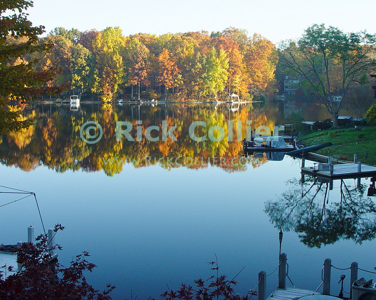 Lake Thoreau, Reston, Virgina, USA.  The bright colors of autumn leaves reflect in a completely calm lake.  © Rick Collier<br /> <br /> <br /> Lake Thoreau Reston Virgina fall color lake reflection serene serenity reflections tree trees leaves autumn peace calm relax relaxing relaxation colors nature