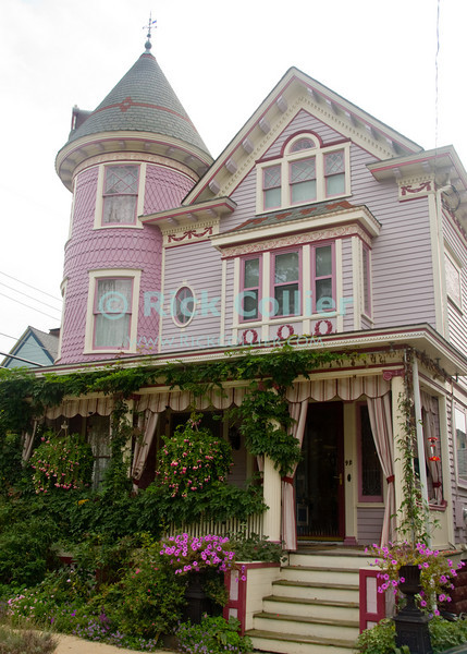 """Garden House (door)"" - A pastel painted home is ""garnished"" with flowers and plants of all kinds.  Ocean Grove, New Jersey, USA.<br /> <br /> <br /> <br /> USA ""New Jersey"" NJ ""Ocean Grove"" Ocean Grove sidewalk garden flowers wildflowers butterfly bee flower bed flowerbed house home pastel paint trim pink purple vine bush tree plant flower flowers steps stairs porch deck door front door"