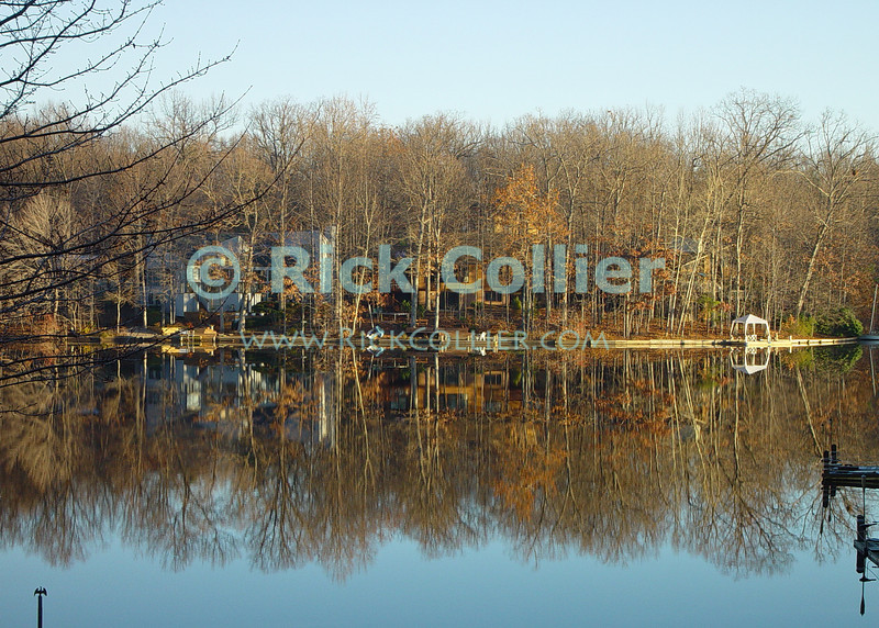 Lake Thoreau, Reston, Virgina, USA.  The lake is calm and still, reflecting the barren winter trees on a cold winter day.  © Rick Collier<br /> <br /> <br /> Lake Thoreau Reston Virginia barren trees woods reflection reflections serene calm winter